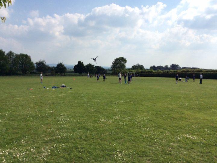 Sunshine and cricket