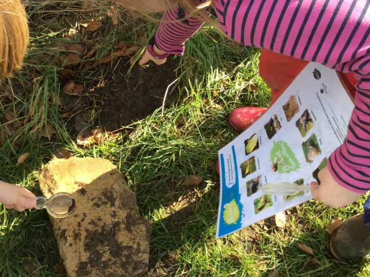Outdoor learning 06.03.20 Ecosystems